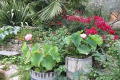 le jardin 35